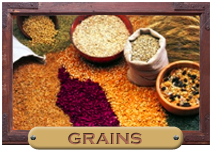Guide to Growing Grains