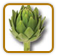 How to Grow Artichoke | Guide to Growing Artichoke