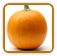 How to Grow Pumpkin | Guide to Growing Pumpkin