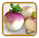 How to Grow Turnip | Guide to Growing Turnip